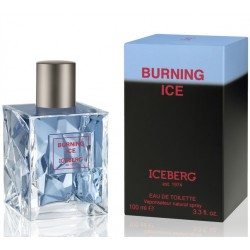 Iceberg Burning Ice / туалетная вода 100ml для мужчин