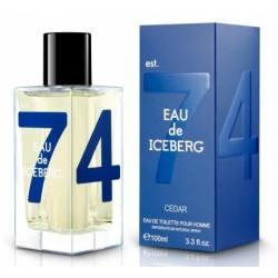 Iceberg Eau de Iceberg Cedar Pour Homme / туалетная вода 100ml для мужчин
