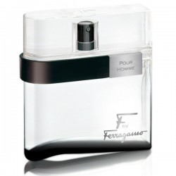 Salvatore Ferragamo F by Ferragamo Black / туалетная вода 100ml для мужчин ТЕСТЕР